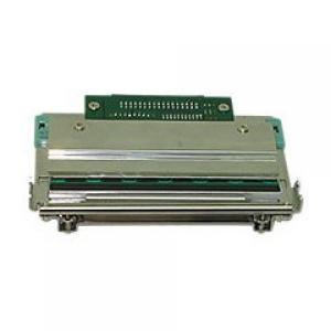 203 dpi для принтера Godex EZ-6200+
